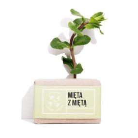 Mydło MIĘTA zMIĘTĄ – 4 Szpaki – 110 g